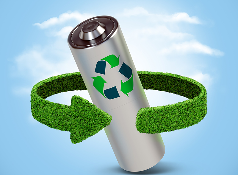 Fungi capable of recycling lithium batteries