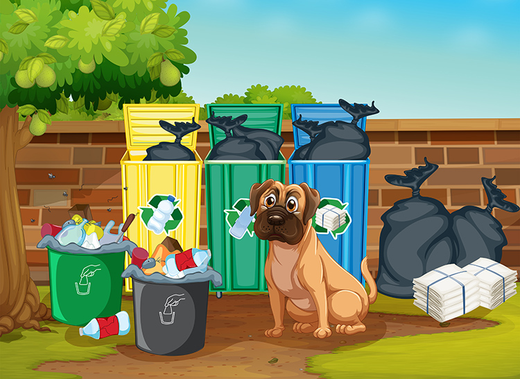 Top 10 Tips to Reduce Trash
